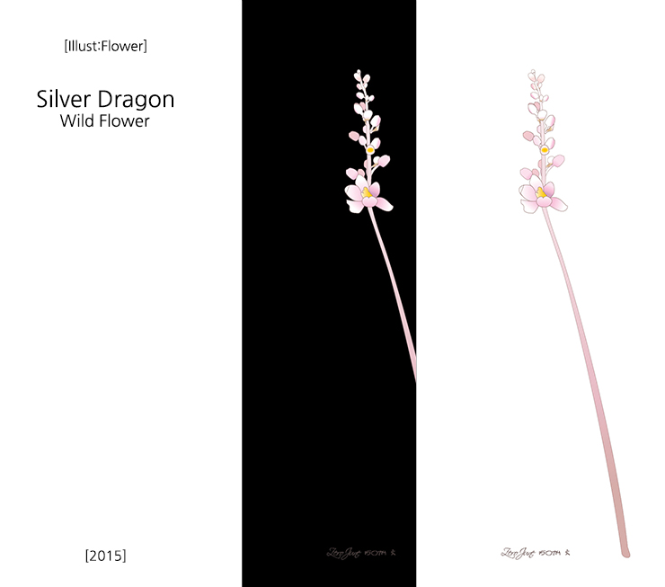 silver-dragon.jpg